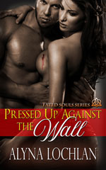 Pressed Up Against the Wall -- Alyna Lochlan